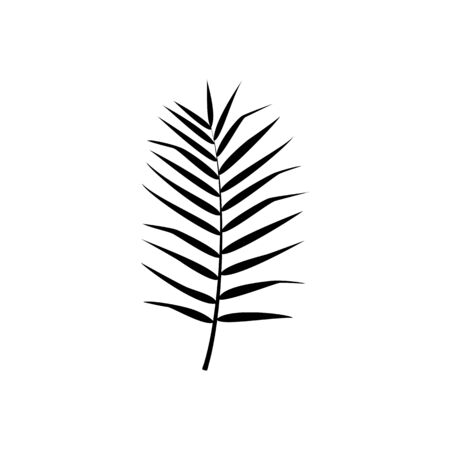 Exotic palm leaf silhouette. Vector isolated illustration with tropical leaf on white background. Can be used for printing, banners, postcard, websites, clothing, design interior. Çizim
