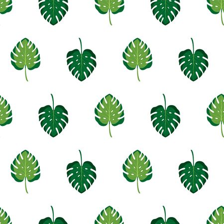 Seamless pattern with monstera leaves on white background. Vector illustration of summer.