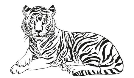 tigre se encuentra en una ilustración de fondo blanco-vector