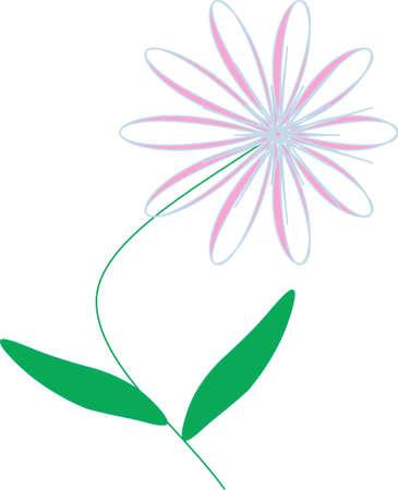lilac floret Illustration