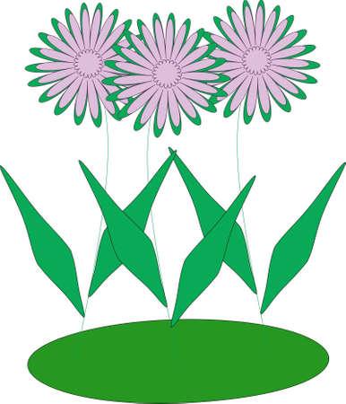 Three florets Illustration
