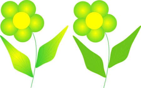 florets: Solar bright florets, vector