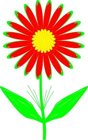 Bright beautiful floret