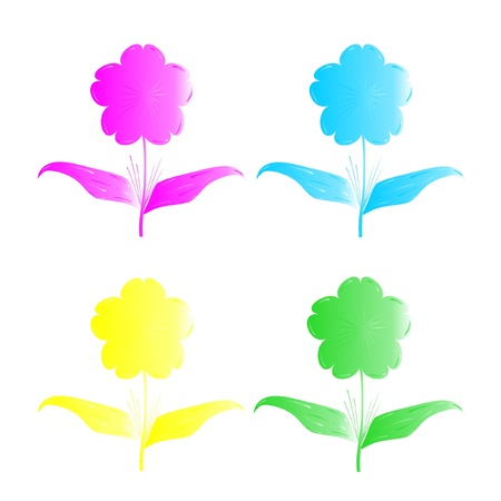 Four florets of different color on a white background