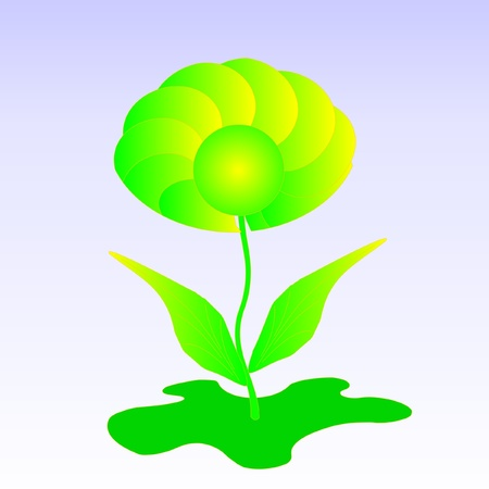 one floret on a blue background