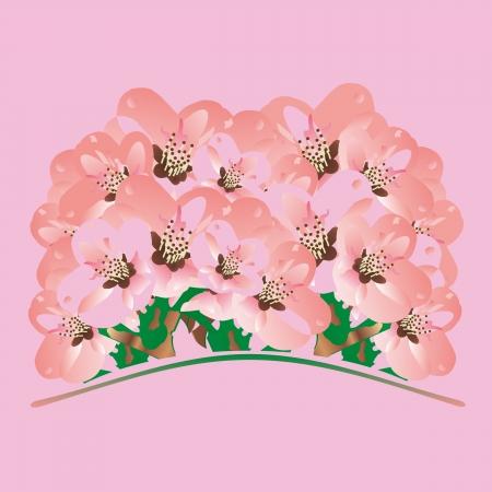 hillock: ramo de flores sobre un fondo de color rosa