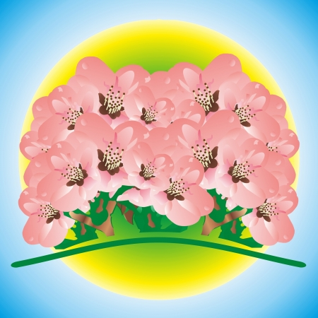 pink bunch of flowers against a circle Vector