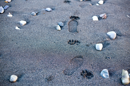 find your way: Human footpath on sand beach. Find your way concept. Man walking alone. Nobody. Horizontal composition.