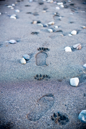 find your way: Human footpath on sand beach. Find your way concept. Man walking alone. Nobody. Vertical composition.