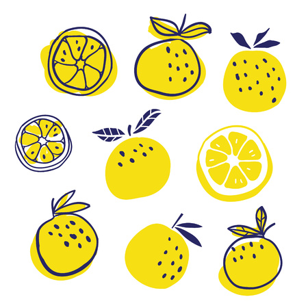 Set of stylish oranges fruits vector illustration. Summer design. Stylish kitchen