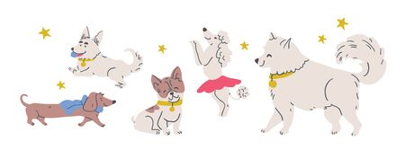 Vector illustration with cute dogs isolated on white: poodle, bulldog, dachshund, corgi, samoyed with stars. Horizontal postcard design, perfect for kids textile, nursery decor, fabric Ilustrace