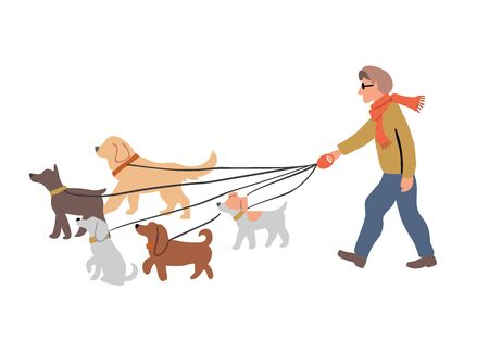 Vector illustration of the man dog walking with many dogs breeds.  Dog walker concept illustration in cartoon hand drawn style. dogs on the street