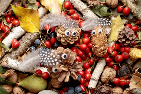 Autumn background, cones, pine, yellow leaves, rose hip, birch branch, nuts. Cones with eyes and bird feathers as a cap. Banco de Imagens