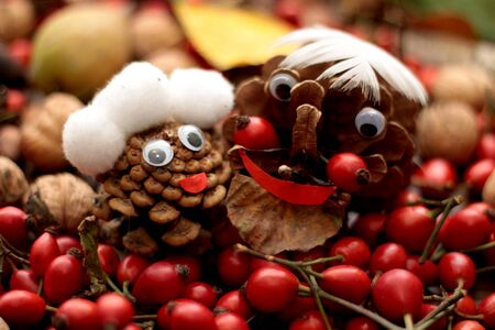 close up of an pine cones with faces and hair like senior, grandmother and grandfather, surounded by rose hips, nuts, pears