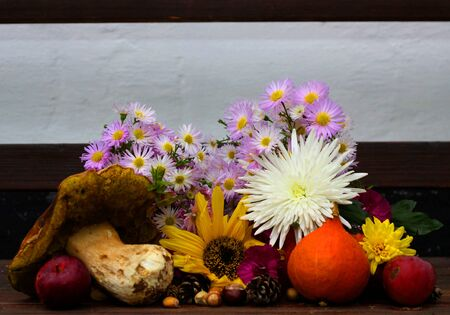 Autumn still life with seasonal fruits,flowers and vegetables on wooden background. Pumpkin, sunflower, aster, small red apples, nuts.