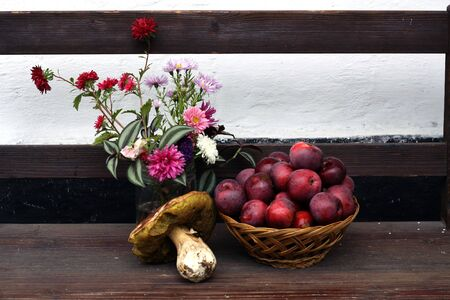 autumnal red apples and huge mushroom and flowers on wooden bank Banco de Imagens