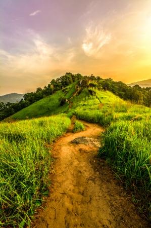 pathways: Fantasy Pathway
