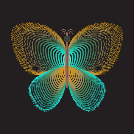 fine lines: Decorative stylized butterfly on black background for your design. Beautiful soft colorful butterfly of fine lines, blends