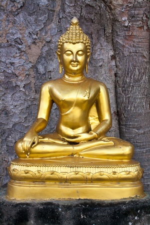 subduing: Buddha imege in the attitude of Subduing Mara
