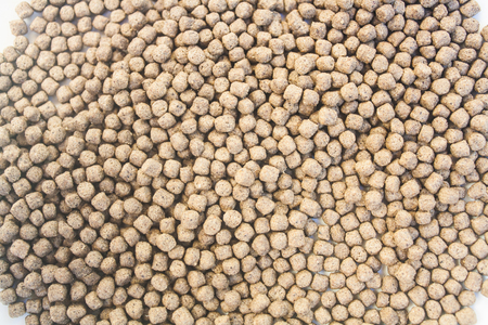 pellet: Floating Fish Feed Pellet Stock Photo