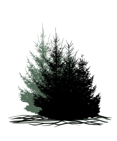 Trees, forest, grove, Christmas trees isolated on white background vector illustration staffing. Silhouette stamp for decoration.