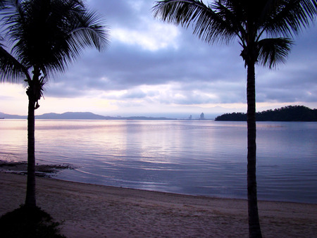 Paradise for couple - a romantic evening on the beach in a tropical exotic island. Silhouettes of two palm trees at sunset