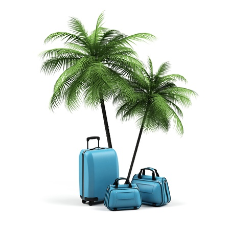 Luggage and palms on a white background.