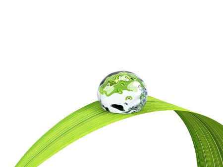 grass close up: Waterdrop on a blade of grass  Stock Photo