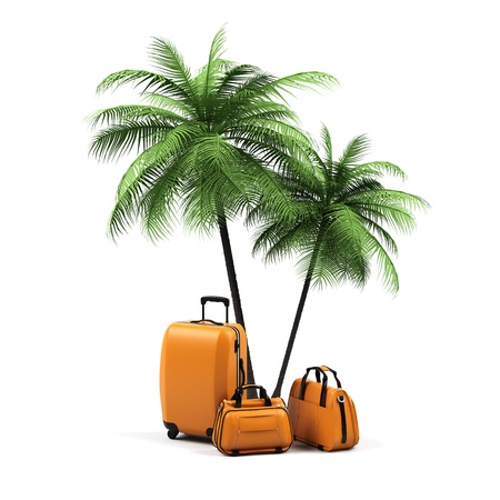 vanity bag: Luggage and palms on a white background