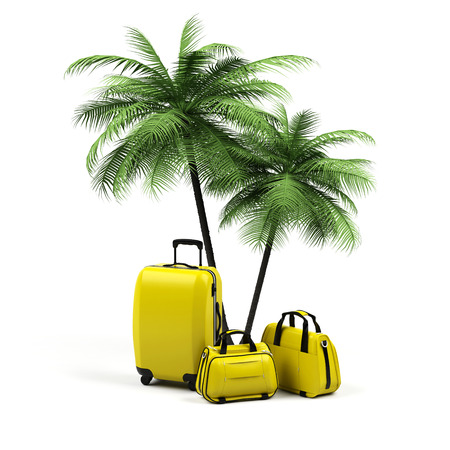 Suitcases with palm tree isolated on white background Stock Photo