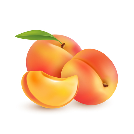 intact: Ripe peaches, whole and slice. Fully editable handmade mesh. Vector illustration.