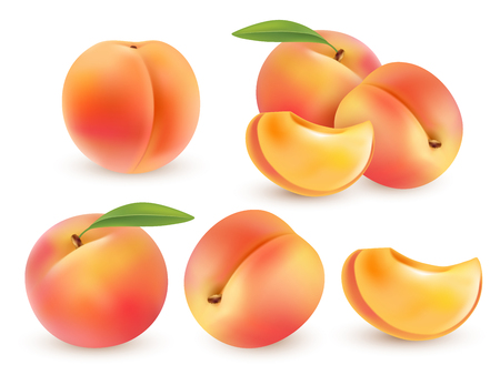 Peach Sweet fruit. Realistic illustration  イラスト・ベクター素材