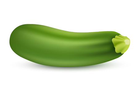 Fresh zucchini isolated on background. Vegetable marrow courgette or zucchini. Vector image Illustration