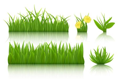 Green grass set vector illustration