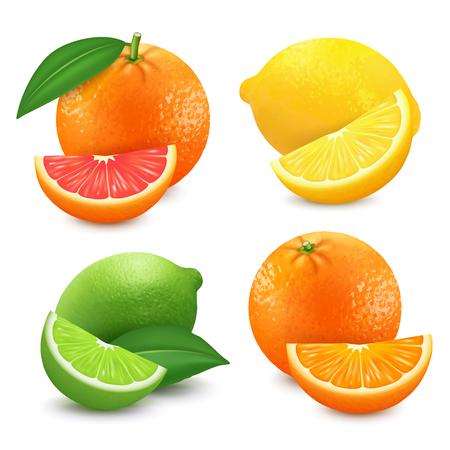 Fresh citrus fruits set. Orange grapefruit lemon lime isolated vector illustration. Illustration