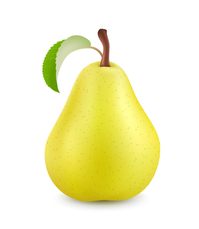 Pear isolated on white background. 3d realistic vector image