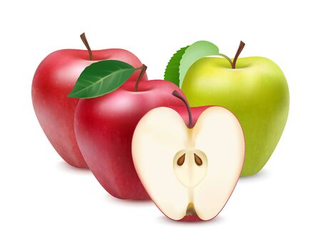 Realistic of red and green apples isolated on white Ilustrace