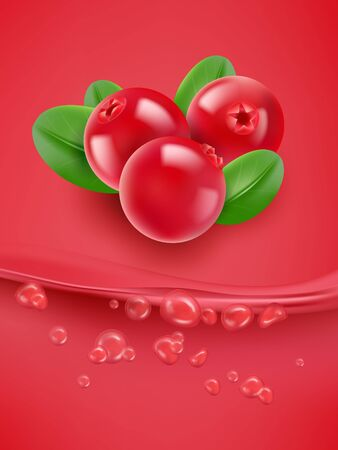 Cranberry juice close up. Fresh cranberry juice. 3d vector illustration. Stock Photo
