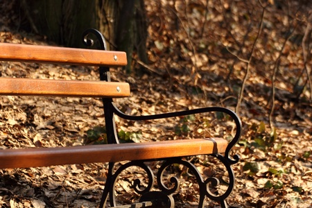 timber bench seat: lonely bench in a corner of a park in spring Stock Photo