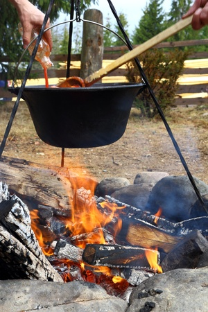 outdoor cooking in cauldron over the fire photo