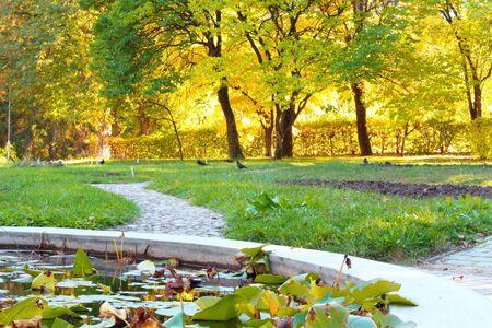 gränd i parken vid skymning och sjö med näckrosor Stockfoto