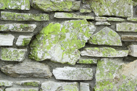 old stone wall covered with green moss photo
