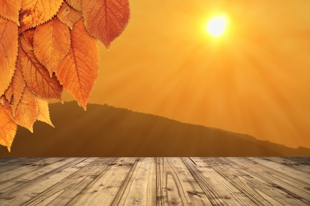 colorful autumn background with terrace of wooden floor and rays from the sun - cherry leaves from the tree in the foreground