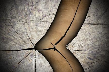 木の切り株の抽象的なテクスチャをクラック