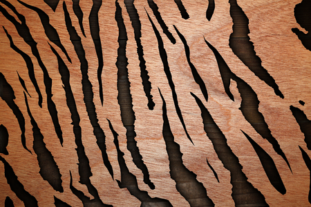 abstract wood textures combined resembling  tiger pattern   with shadow   photo