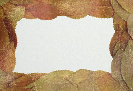 distressed autumn backdrop with place for text, black background for your message photo