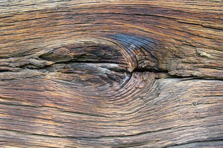 interesting knot on very old and weathered  oak wood photo