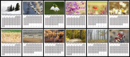 meses del año: Calendario de la naturaleza año 2016, el diseño con todos los meses
