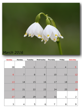 nature image: march calendar page with nature image
