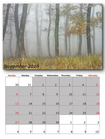 november calendar: november calendar page with nature image
